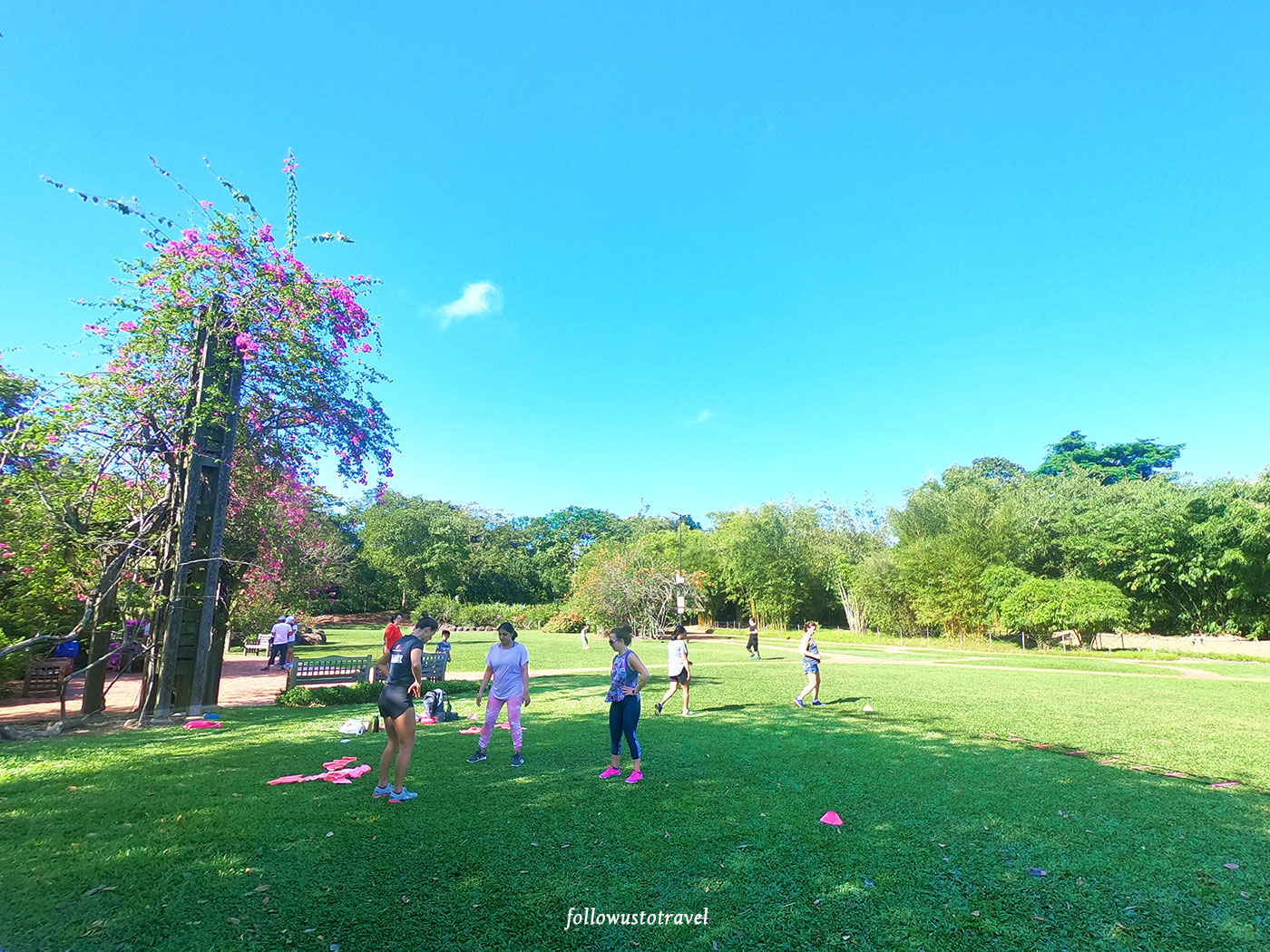 exercise in singapore botanic gardens