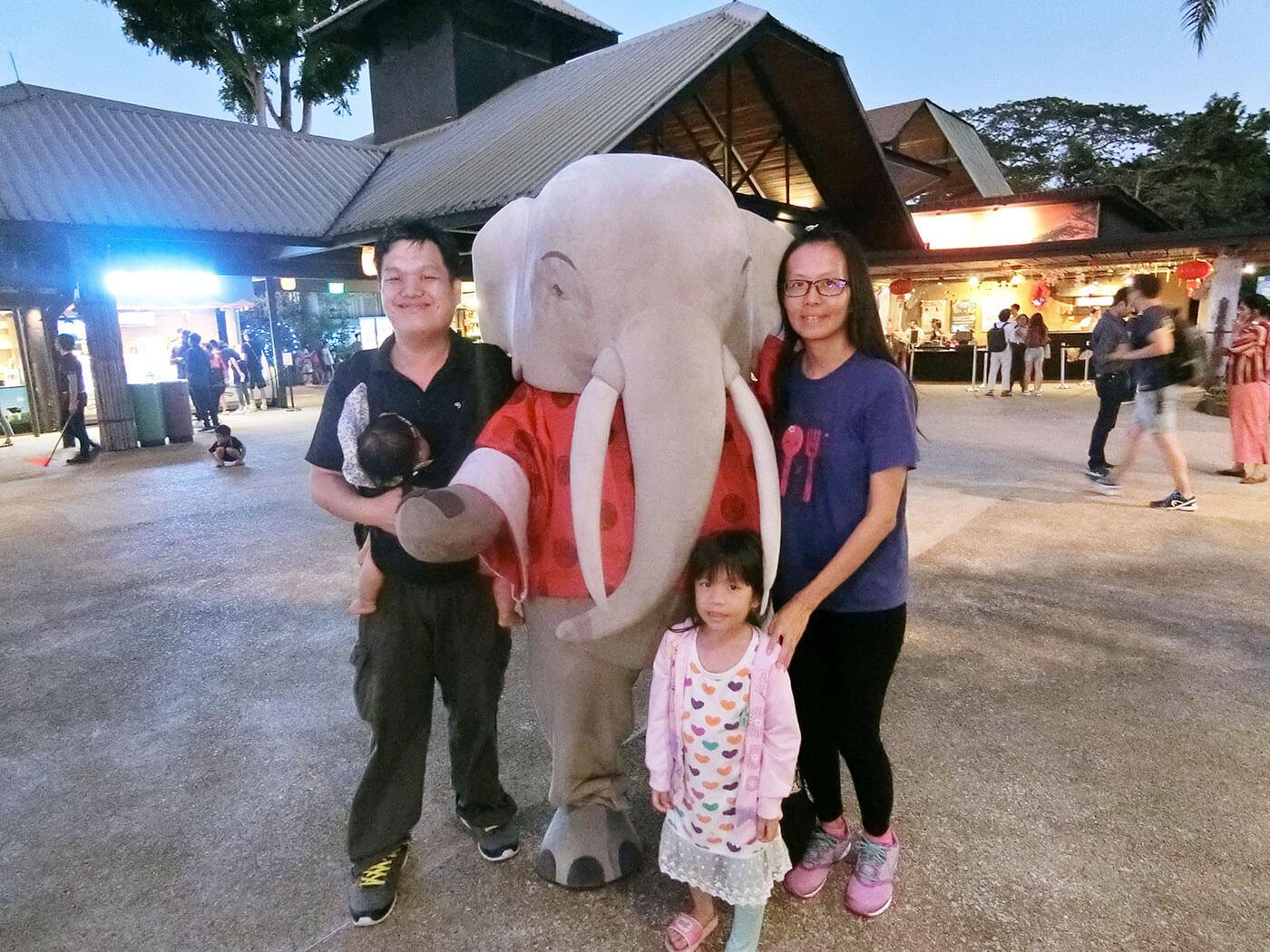 新加坡夜间动物园大象