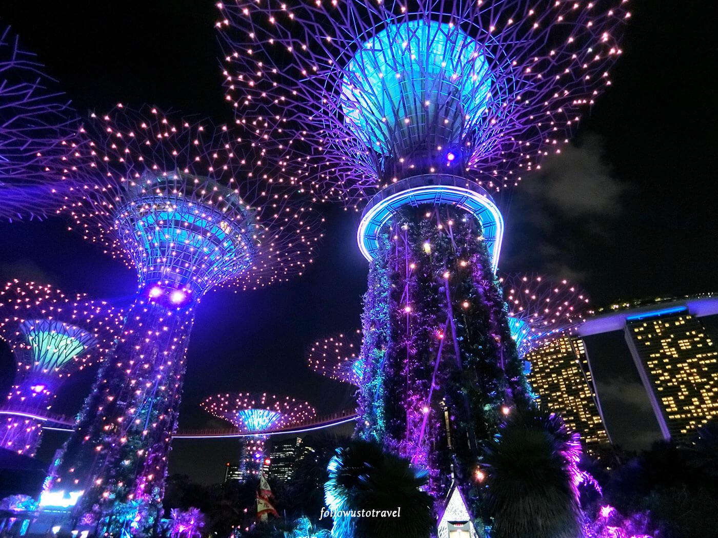滨海湾花园超级树