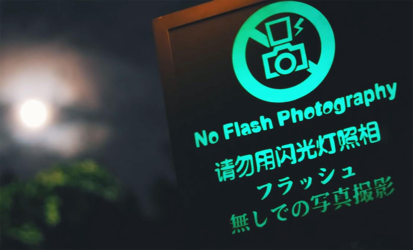 新加坡夜间动物园不能使用闪光灯