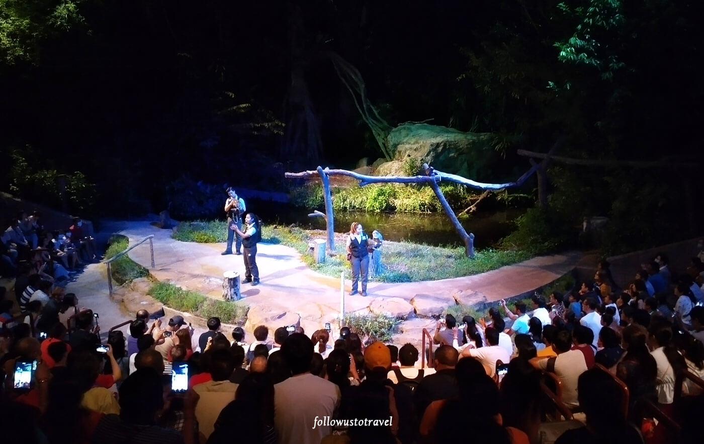 新加坡动物园表演