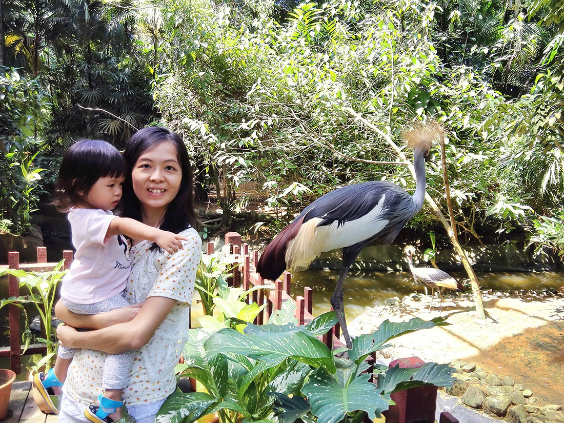 兰卡威景点兰卡威野生动物园
