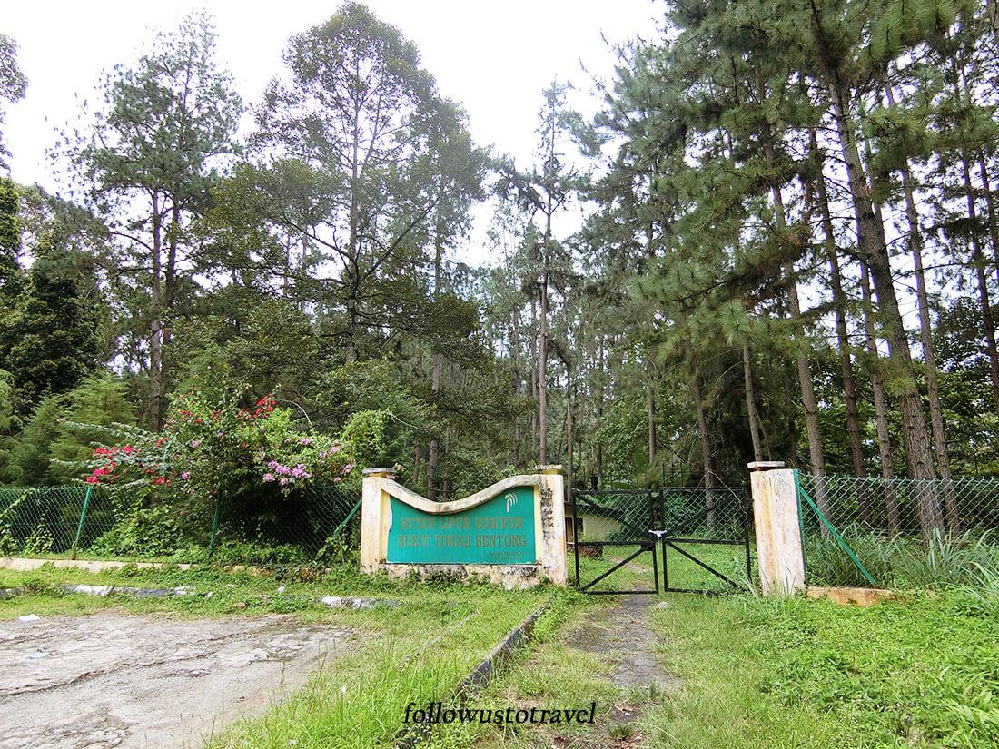 彭亨文冬森林公园
