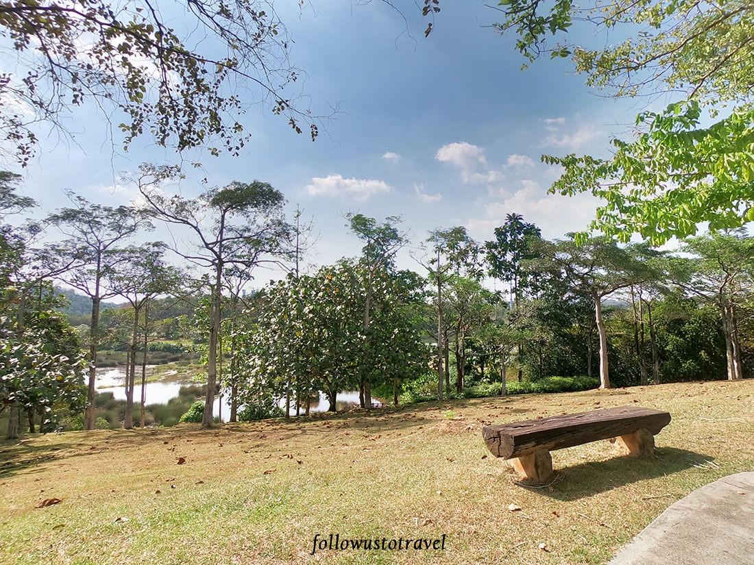 布城湿地公园野餐