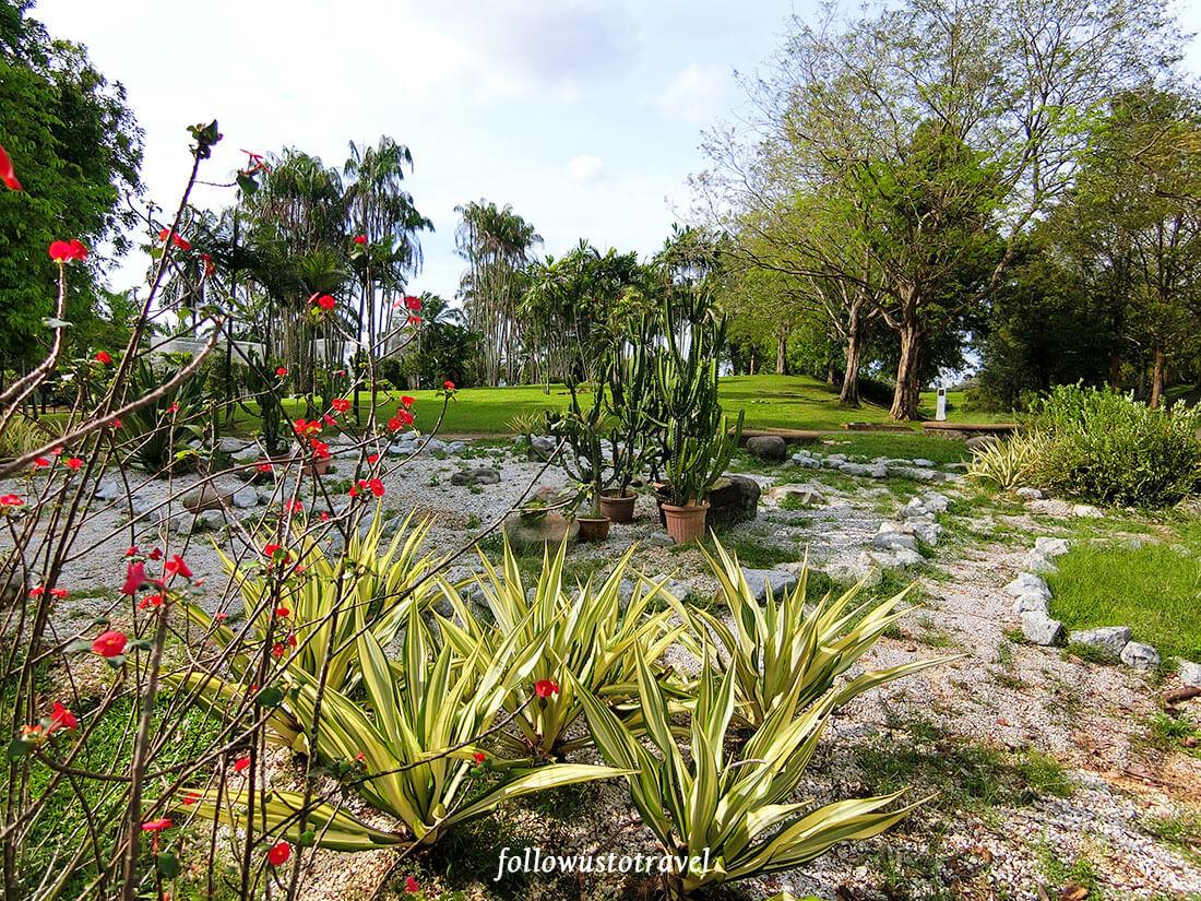 布城景点布城植物园